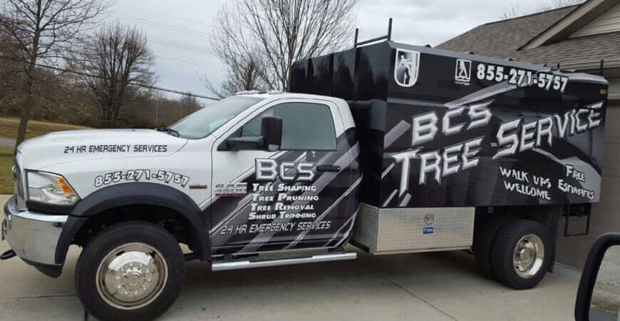 BCS Tree Service Garland TX