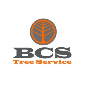 BCS Tree Service Logo Arlington TX